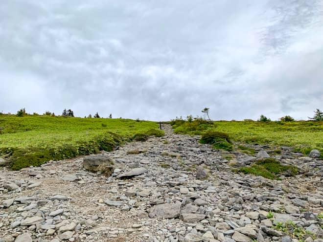 200メートルほど進むと、更に景色が開けて道幅が広くなります