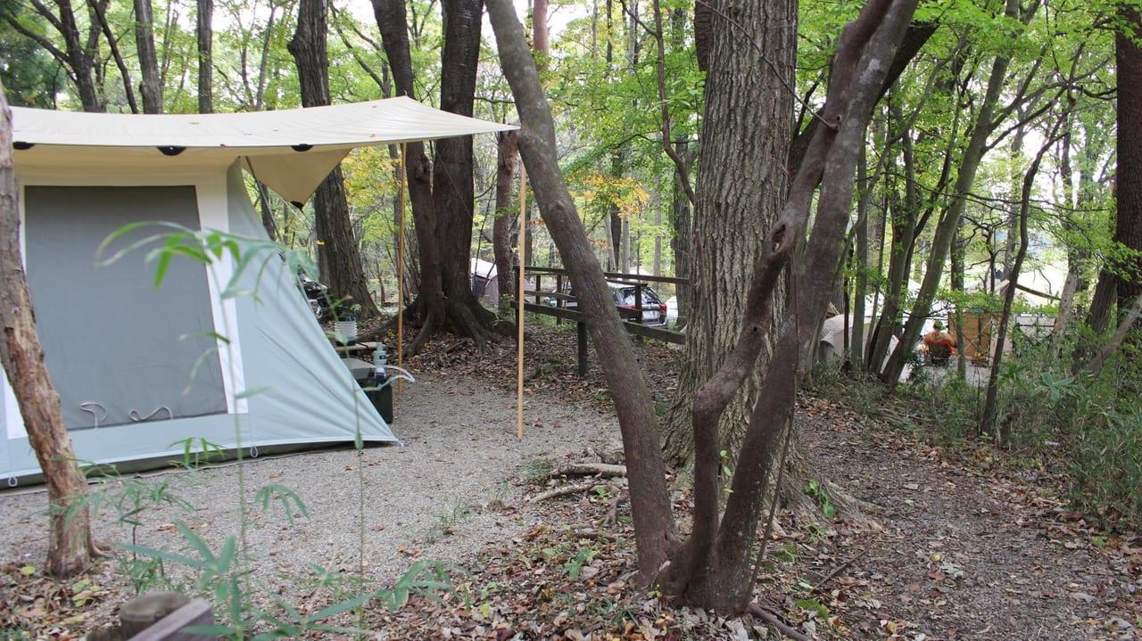 /6152-キャンプラビットのプライベート感満載の林間サイト1