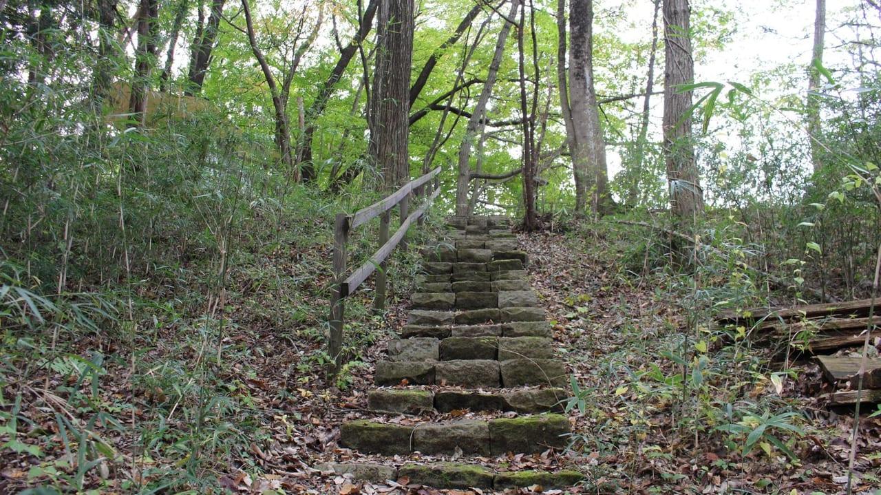 /6152-キャンプラビットの階段1